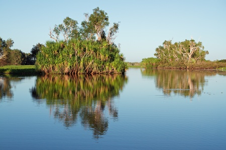 Trees with reflections, Yellow water billabong, Kakadu National Park, Northern Territory, Australia  Stock Photo - 8627326