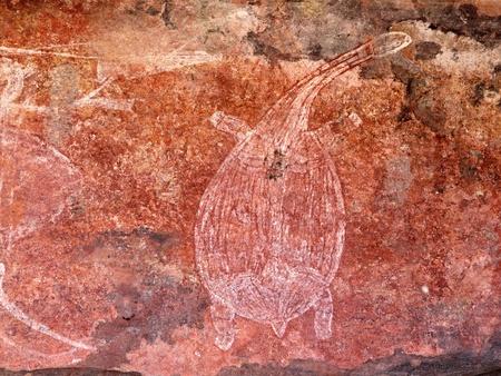 kakadu: Aboriginal rock art depicting a turtle, Ubirr, Kakadu National Park, Northern Territory, Australia Stock Photo