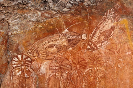 Aboriginal rock art depicting fishes, Nourlangie, Kakadu National Park, Northern Territory, Australia photo