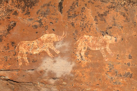 pintura rupestre: Bosquimanos - san - rock pintura rinoceronte que representa, las montañas Drakensberg, Sudáfrica