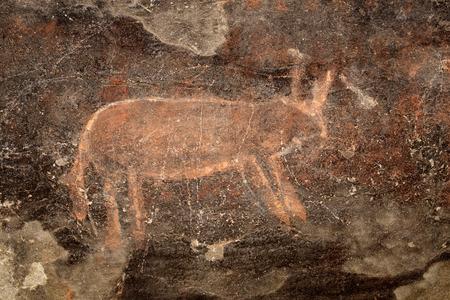 rock painting: Bushmen - san - rock painting of an antelope, Karoo region, South Africa