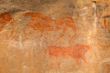 rock painting: Bushmen - san - rock painting of antelopes, Karoo region, South Africa