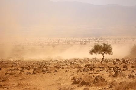 sequias: Llanuras polvorientas durante una grave sequía Kenia Foto de archivo