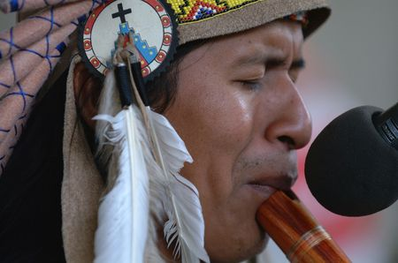 South American Indian Musician