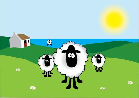 oveja negra: Ovejas con Old Cottage ga�lico en el fondo