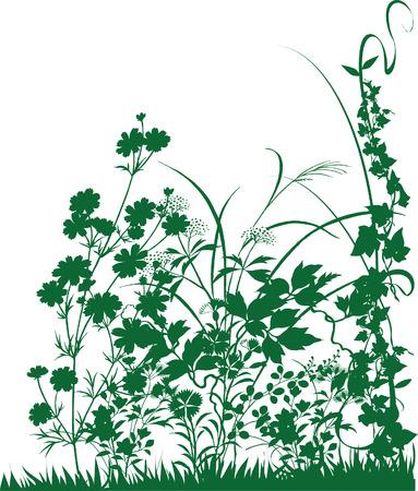 Green Plants Illustration