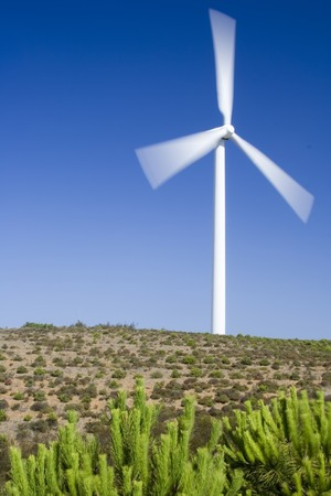 Wind turbine standing in the savanna in western Algarve, Portugal. Stock Photo - 1631532