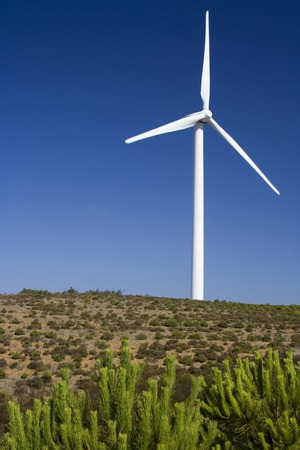 Wind turbine standing in the savanna in western Algarve, Portugal. photo