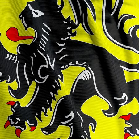 flanders: Closeup of the flag of Flanders, square image