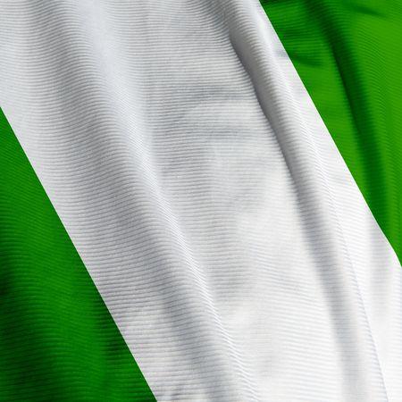 nigerian: Closeup of the Nigerian flag, square image
