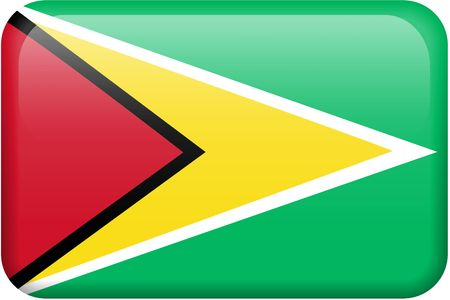 guyanese: Guyanese flag rectangular button.  Part of set of country flags all in 2:3 proportion with accurate design and colors.