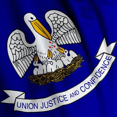 Close up of the flag of the US State of Louisiana, square image photo