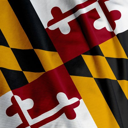 maryland flag: Close up of the flag of the US State of Maryland, square image