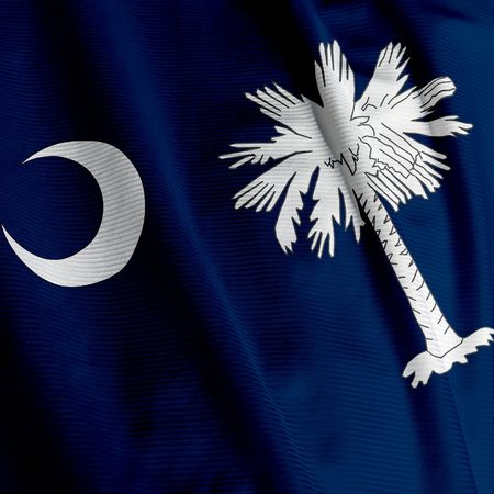 Close up of the flag of the US State of South Carolina, square image photo