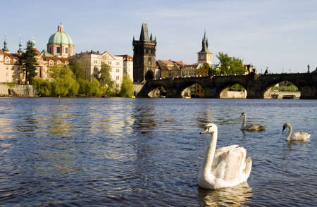 charles bridge: View of the Charles Bridge in Prague from the riverside.