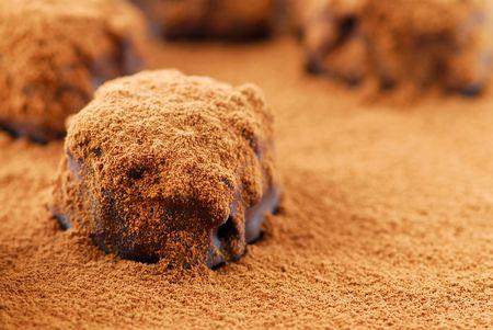 sprinkled: Macro image of dark chocolate truffles sprinkled with cocoa powder