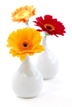 home accents: Three vases with gerbera flowers isolated on white background as interior design element Stock Photo