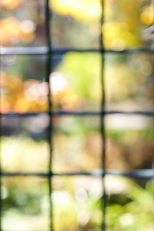 window panes: Abstract blurred defocused bokeh background of colorful sunlit garden through window panes Stock Photo