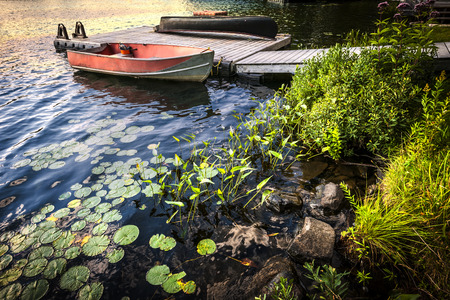 wooden dock: Rowboat tied to dock on beautiful lake at rocky shore with aquatic plants. Ontario, Canada.