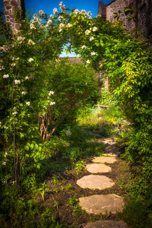 Summer garden with paved path and trellis photo