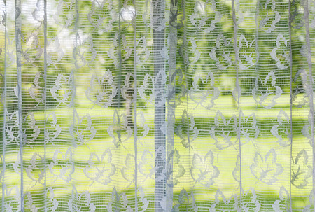 window treatments: Window with lace curtains looking out to green summer park
