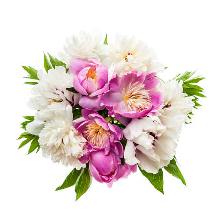 Bouquet of fresh peony flowers isolated on white background