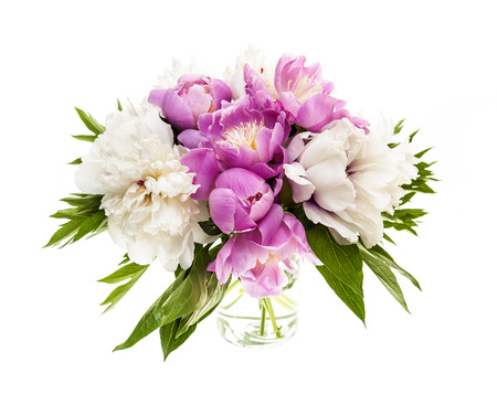 Bouquet of fresh peony flowers isolated on white background photo