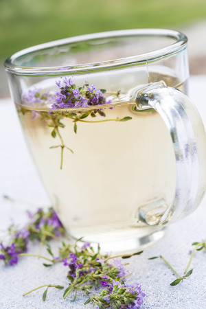teas: Cup of herbal thyme tea with fresh herb flowers