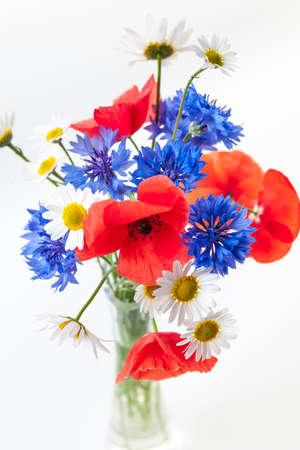 fleurs des champs: Bouquet de fleurs sauvages - coquelicots, marguerites, bleuets - sur fond blanc, tourné en studio.