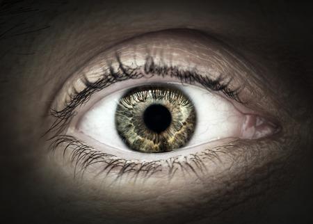 eyeball: Macro closeup of male eye with eyelid eyelashes and interesting iris pattern