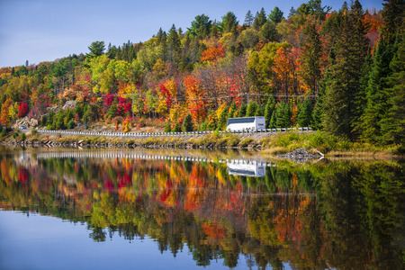 algonquin park: Tour bus driving though fall forest with colorful autumn leaves reflecting in lake. Highway 60 at Lake of Two Rivers, Algonquin Park, Ontario, Canada.