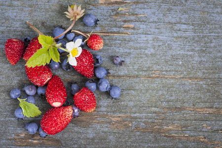 rustic food: Fresh small wild strawberries and blueberries with copy space on old blue wooden background Stock Photo