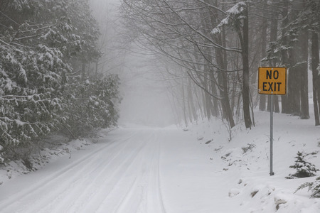Winter road and trees covered in snow with Yellow No Exit sign photo