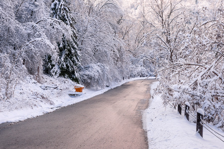 ice storm: Winter road through icy forest covered in snow after ice storm and snowfall. Ontario, Canada. Stock Photo