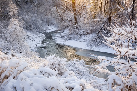 flowing river: Winter landscape of snow covered forest with flowing river after winter snowstorm glowing and sparkling in warm sunshine. Ontario, Canada.