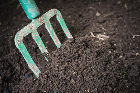 composting: Garden fork turning  black composted soil in compost bin ready for gardening, close up. Stock Photo