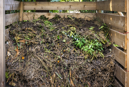 composting: Organic yard waste in wooden compost box for backyard garden composting