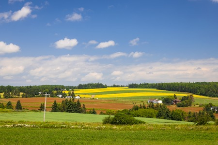 edward: Summer landscape of farms and fields with red soil, Prince Edward Island, Canada. Stock Photo