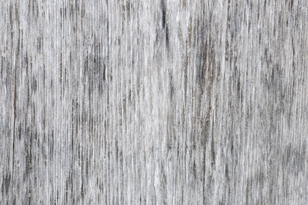 unpainted: Gray wooden background of weathered distressed unpainted rustic wood showing woodgrain texture
