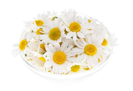 romano: Flores romanas medicinales frescas de manzanilla en un tazón aisladas sobre fondo blanco