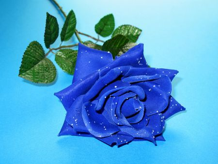 whiff: An artificial blue rose with dewy petals on a blue background.