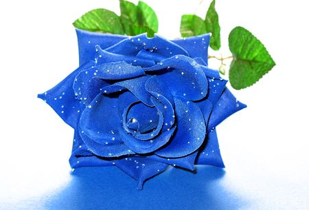 An artificial blue rose with dewy petals. photo