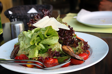A vegetable salad with grilled eggplant and slices of parmesan cheese  photo