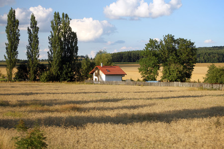 A solitary house in a hay field among green trees  photo