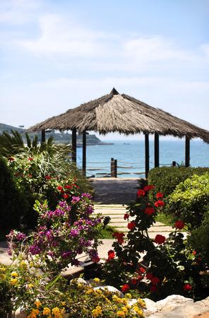 lebanon beach: A straw parasol behind a garden on the beach in Lebanon.