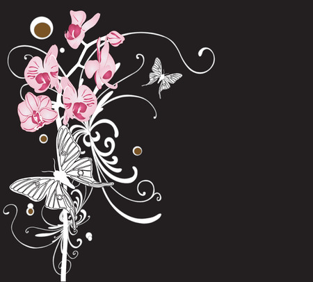 Illustration of orchids and butterflies