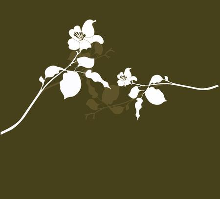 feuillage: Illustration d'un floral background