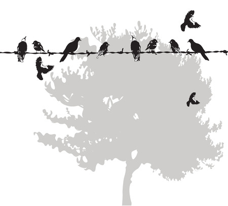 birds on a wire: Illustration of birds on a wire Illustration