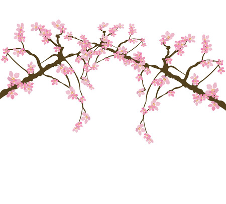 Illustration of a floral background Vector
