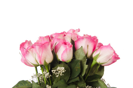 Nice roses in celebration concept Stock Photo - 23226146